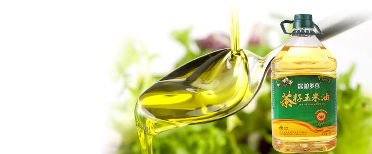 茶籽油和橄榄油哪个好